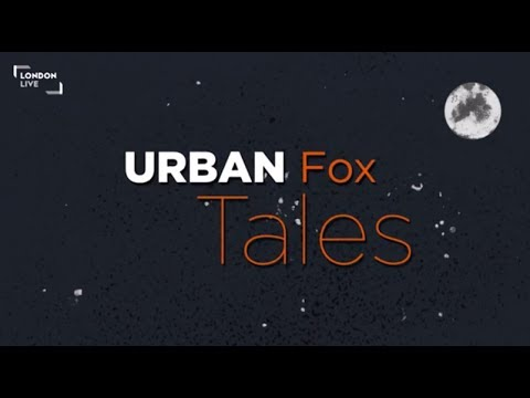 Secret London: Urban Fox Tales