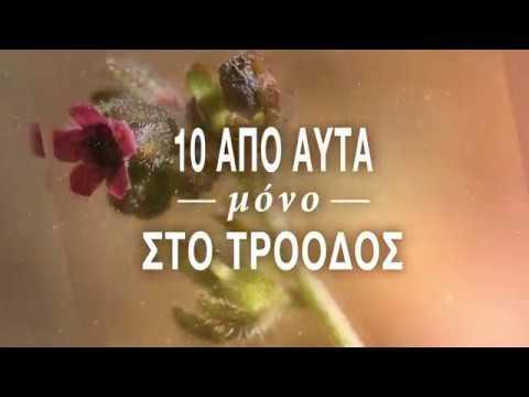 iLifeTROODOS – Χλωρίδα