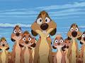The Lion King 3 Diggah Tunnah English