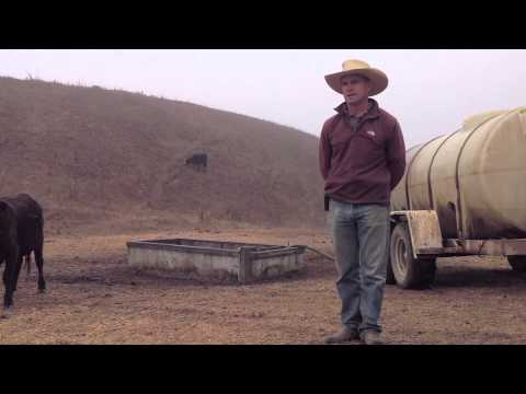 Video Project - California Drought
