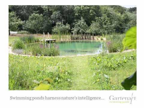 Gartenart Swimming Ponds Slideshow