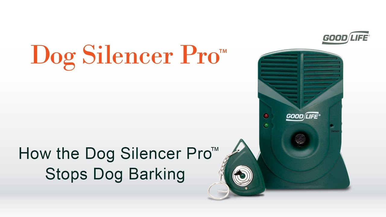 Device To Make Dog Stop Barking