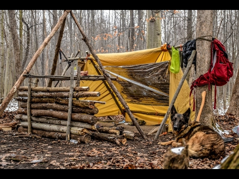 Overnight Bushcraft Camp with my Dog - Long Fire, Wool Blanket, Fire Reflector