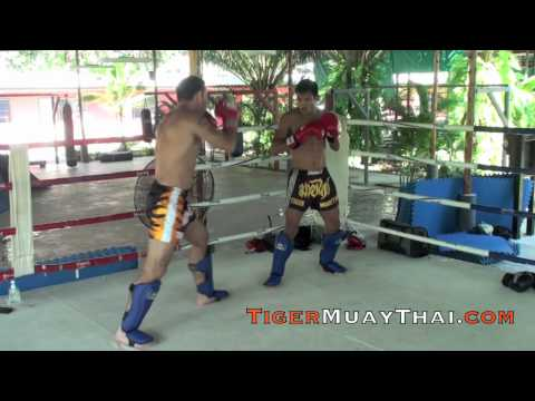 Jake Shields, UFC Champion Contender Technique training @ Tiger Muay Thai, Phuket Thailand