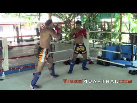 Jake Shields, UFC Champion Contender Technique training @ Tiger Muay Thai, Phuket Thailand