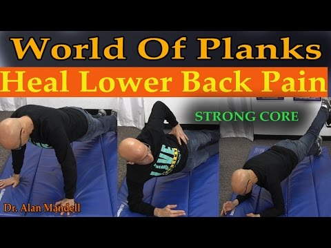 World of Planks - Building Core to Heal Lower Back Pain & Better Posture (Dr Mandell)