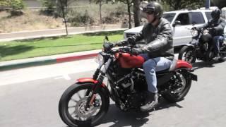 2014 Star Bolt Vs. 2013 Harley-Davidson 883 Iron