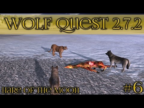 Facing Off Against A Cougar!! • Wolf Quest 2.7.2 - Hare Of The Moon Season • Episode #6