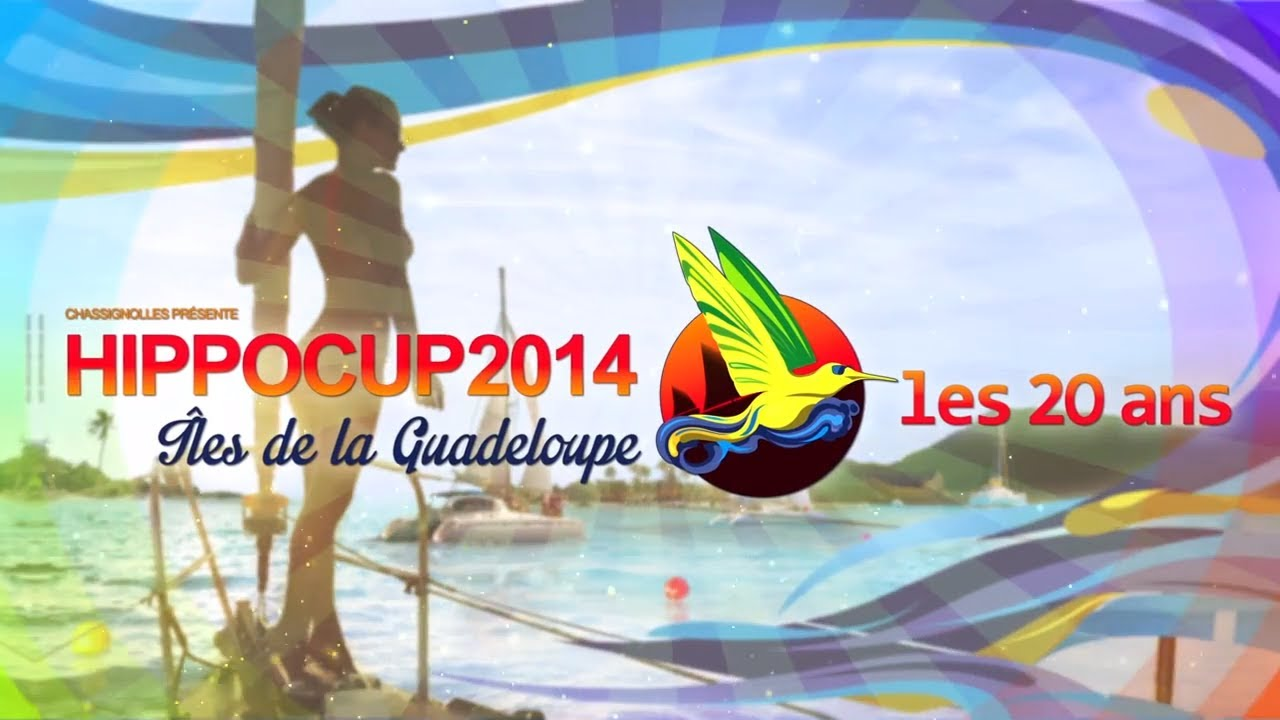 hippocup 2014