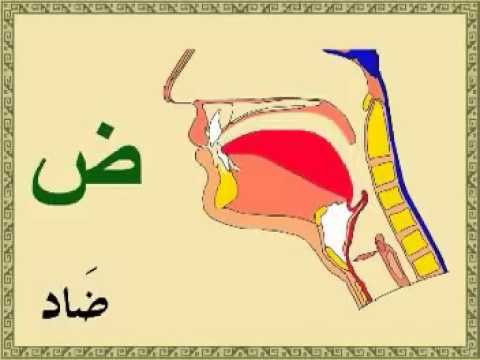 2 Learn the pronunciation of Arabic letters the easy way
