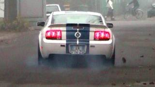 Shelby Mustang GT500 STEEDA Exhaust Little BURNOUT