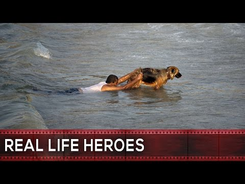 REAL LIFE HEROES   2015   Faith In Humanity Restored   Part 19,