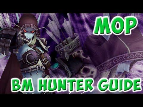 Bm hunter rotation patch 54