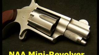 NAA Mini Revolver 22LR Deep Cover Gun