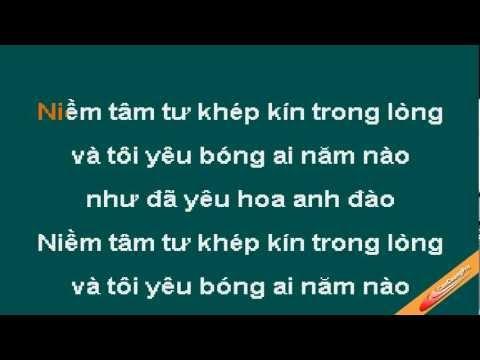 Mua Hoa Anh Dao Karaoke - Hong Nhung - CaoCuongPro