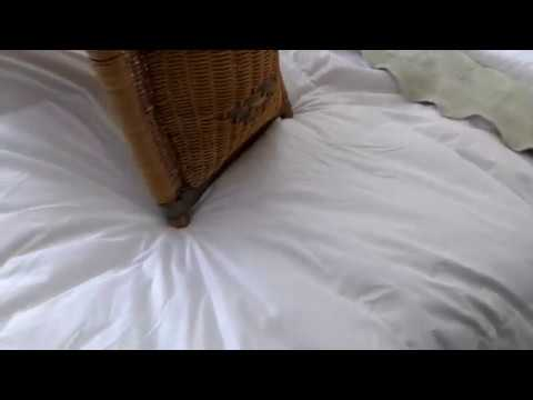 LUXURY BEDDING: MRNIU Luxurious Duvet Insert Goose Down Comforter