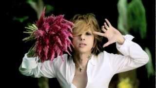 清春 / 「UNDER THE SUN」MUSIC VIDEO(Short ver.)