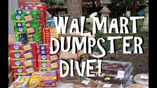 Inside the Walmart Dumpster!!  Unbelievable What Gets Thrown Away! Freeganism and Extreme Frugality!