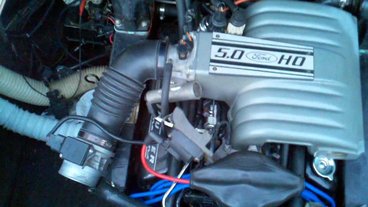 Wiring Harness Kit For 5 0 Efi Engine : Leo v mercruiser efi conversion eec iv