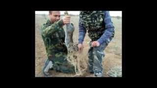 Cooking | caza con hurón en tembleque | caza con hurA³n en tembleque