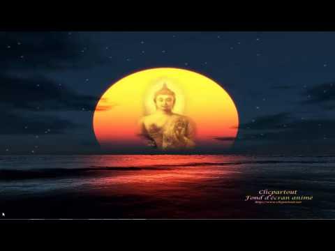 Fond d'écran animé Bouddha