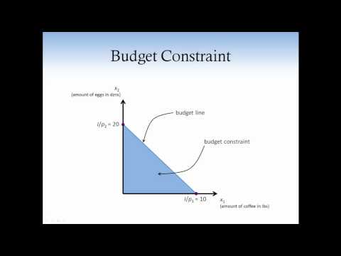 Consumer theory 1. Budget Constraint