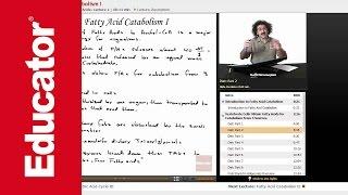 """Fatty Acid Catabolism"" | Biochemistry with Educator.com"