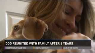 Maisy reunited with family 6 years after she went missing!