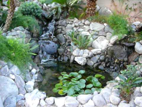 Diy waterfall and koi pond 1 year youtube for Diy ponds and waterfalls