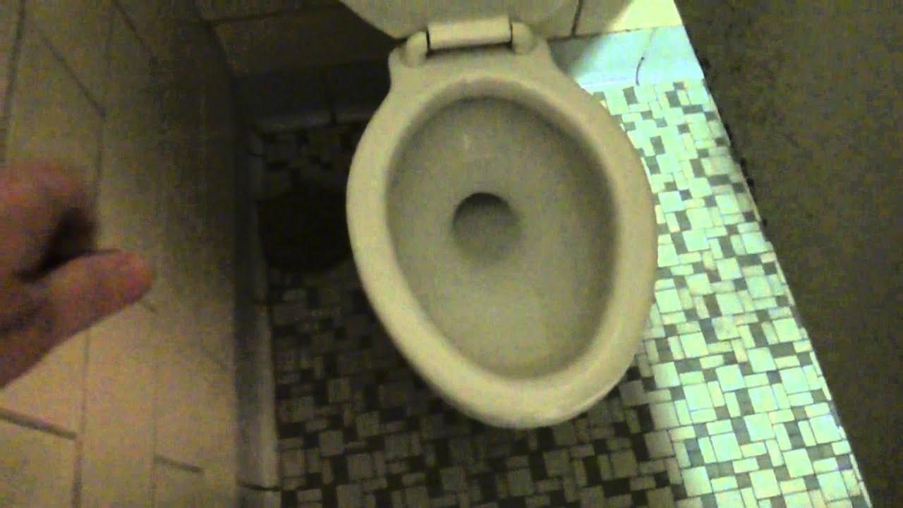 Bathroom tour vintage american standard toilet and urinal for Megan u bathroom tour
