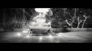 SHOGUN DES OMBRES | L'Hymne Du Shogun