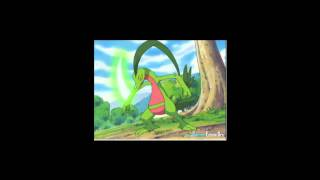 Treeko Evolves Into Grovyle