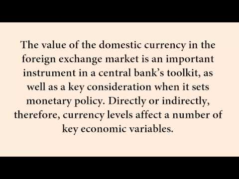 The Effects Of Currency Fluctuations On The Economy  1