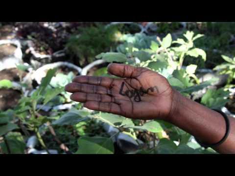 L'avenir d'Haïti est #dansvosmains (version Creole)