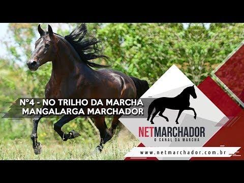 #4 - NO TRILHO DA MARCHA - NET MARCHADOR - O CANAL DA MARCHA 18/09/2017 HD