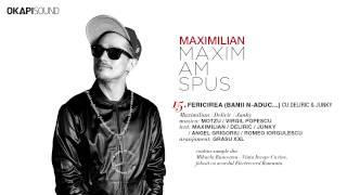 Maximilian - Fericirea (Banii N-Aduc...) cu Deliric & Junky