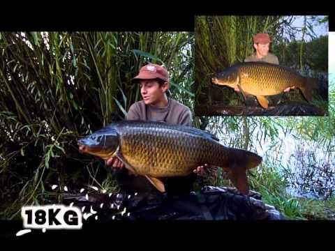 Svazové vody 2014 Bejs Fish