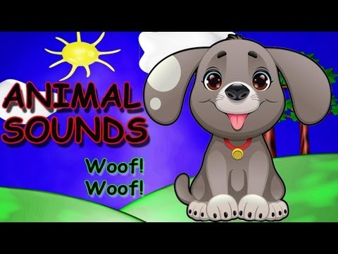 The Animal Sounds Song - Animal Sounds Song for Children - Kids Songs by The Learning Station