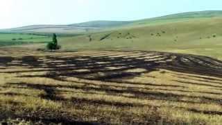 Practici agricole periculoase la Pepeni, Sîngerei