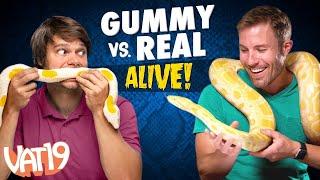 Gummy vs Real Challenge: LIVE ANIMAL edition!