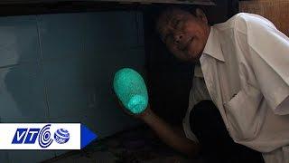 Mua hòn đá 50.000 đồng được trả 2 tỷ đồng   VTC