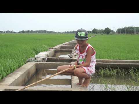 Boy Fishing in Loc An, Vietnam. Em trai câu cá chốt ở Lộc An.
