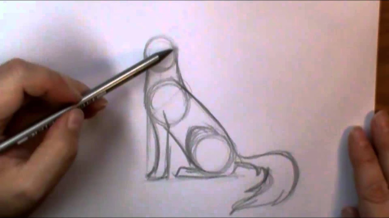 how to draw a wolf howling youtube