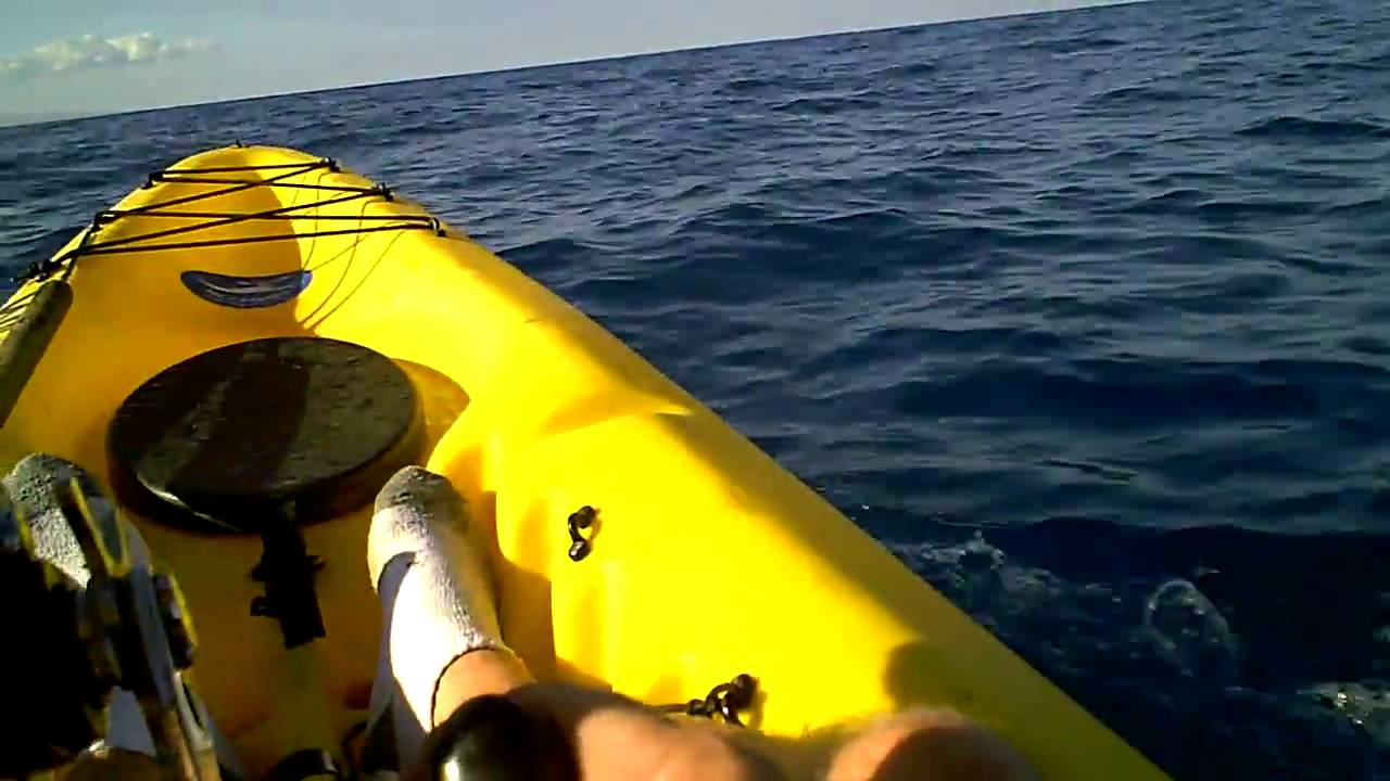 Kayak fishing in hawaii hammerhead shark part 2 youtube for Kayak fishing hawaii