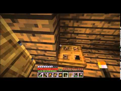 Talx plays: Minecraft! ep 9- Get on building!
