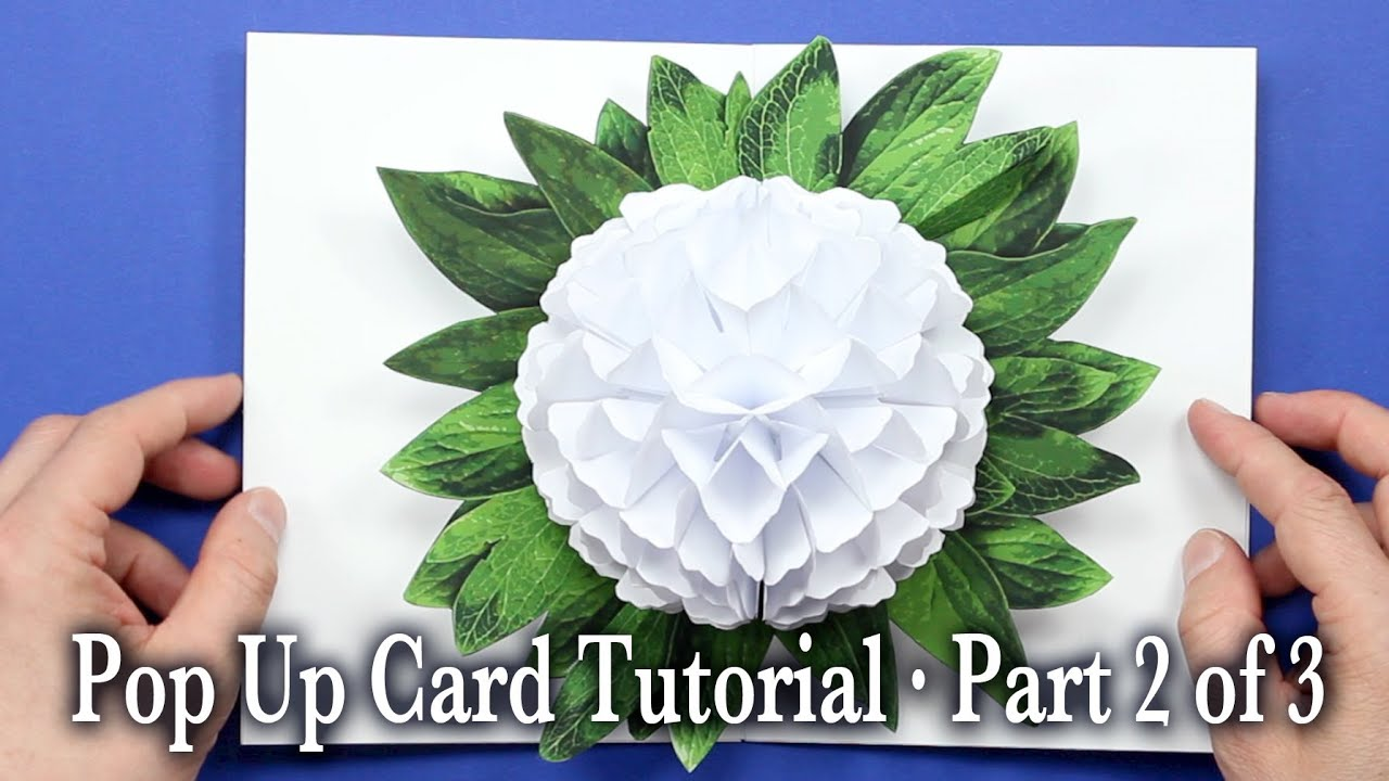Download video flower pop up card tutorial part 1 of 3 download video flower pop up card tutorial part 1 of 3 mightylinksfo