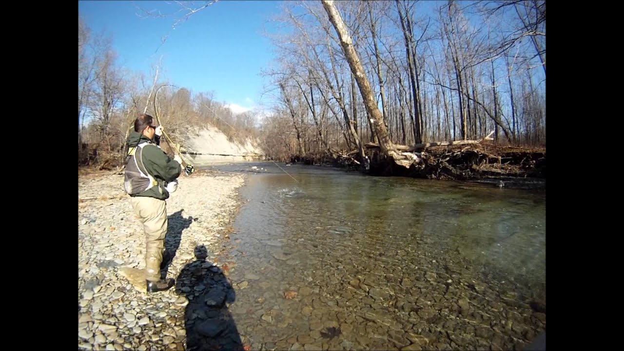 elk creek steelhead 11 23 2012 youtube