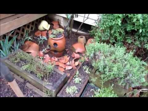 An Old Herb Garden Becomes  a Pepper & Tomato Garden: Find Your Motivation for a Garden Makeover