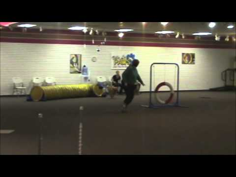 Villa La PAWS - Agility for Fun 1 Graduation - January 7
