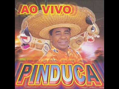 PINDUCA - MARCHA DO VESTIBULAR (AO VIVO)